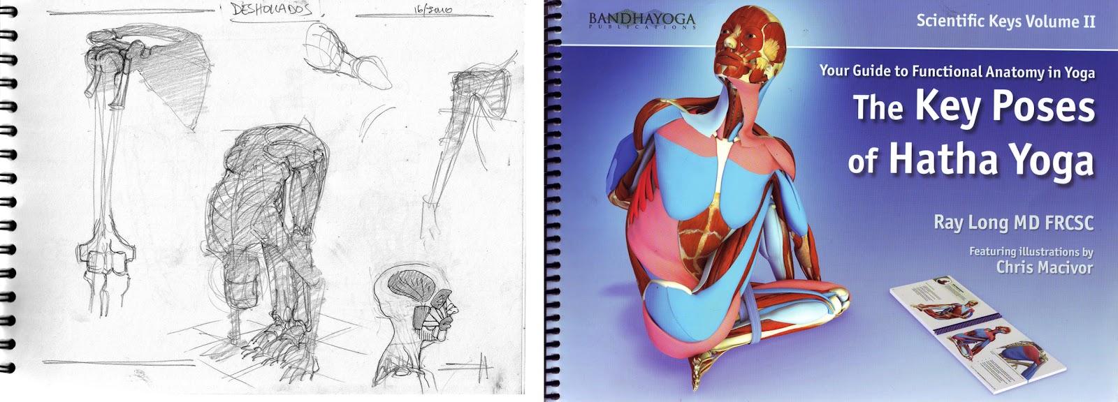 El Blog del Profe de Dibujo.: Nuevo Libro de Anatomía y Yoga.