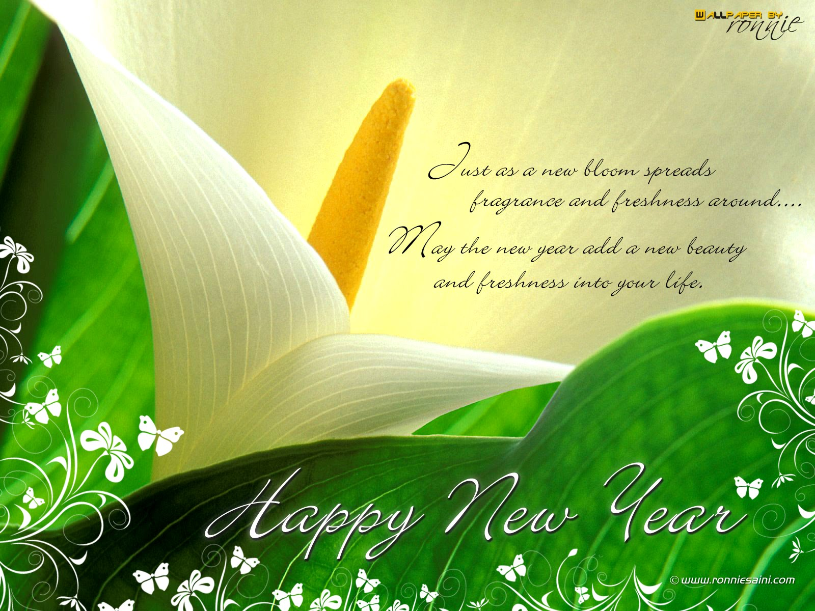 Wallpaper Downloads: HAPPY NEW YEAR GREETINGS WALLPAPER