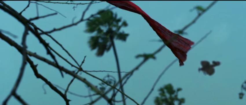 Hawaizaada (2015) Full Hindi Movie Download free in HD 3gp mp4 hq avi 720P