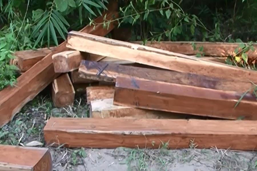 Phát hiện điểm cất giấu gỗ tại huyện Kông Chro