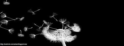Couverture facebook nature noir et blanc