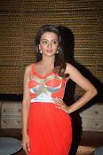 Surveen Chawla latest glamorous photos-thumbnail-20