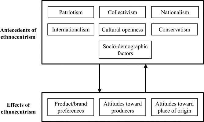 examples of ethnocentrism Communication strategies: reduce your ethnocentrism ethnocentrism is the tendency to evaluate the values,  for example, if.