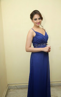 Actress Zoya Afroz Picture Gallery in Blue Long Dress  45.jpg