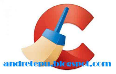 download ccleaner business