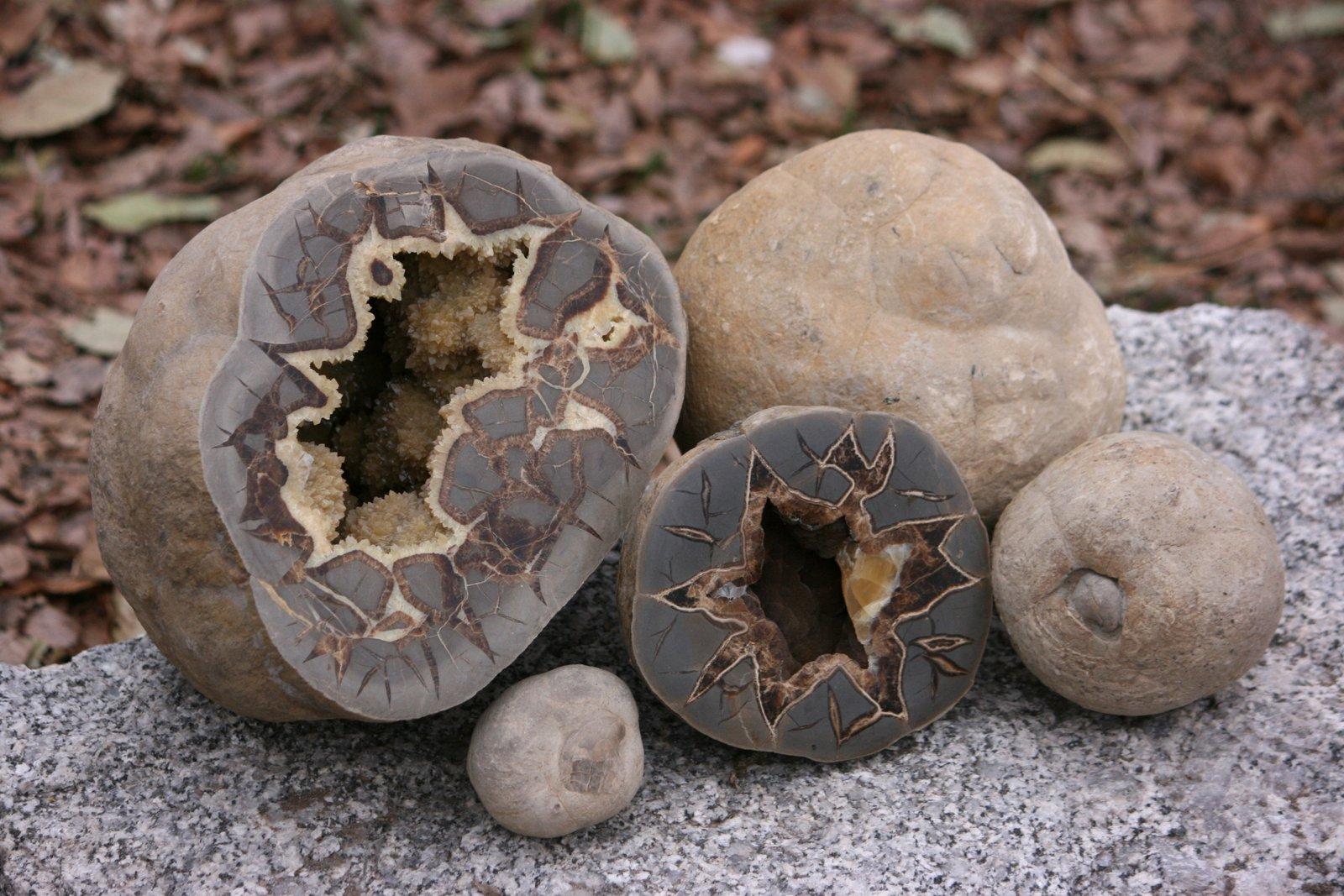Mt carmel septarian nodules utah antique bottle cliche mt carmel septarian nodules biocorpaavc Gallery