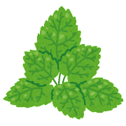 ミントの葉のイラスト