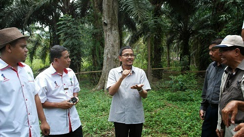 Kampung Lubok Buaya Malaysia  city photo : ... TERNAKAN LEBAH KELULUT DESA LESTARI   Syamille Lebah Kelulut Malaysia