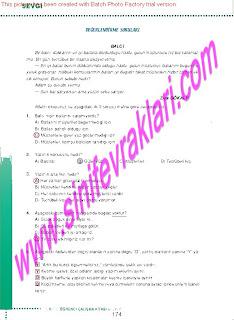 6.Sinif  Turkce Doku Yayinlari Ogrenci Calisma Kitabi Sayfa 174
