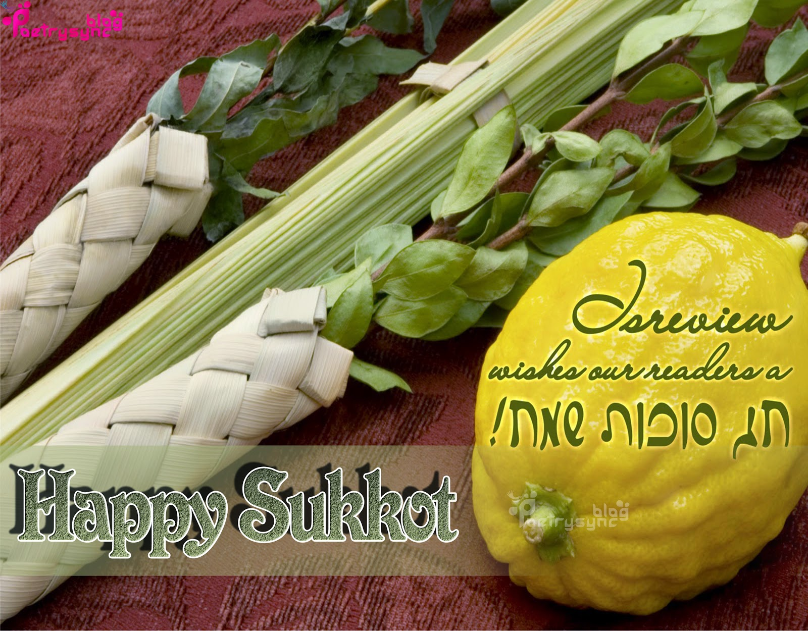 Poetryquotes sukkot wishing sukkot festival 2014 greetings with detail information and hd wallpapers m4hsunfo