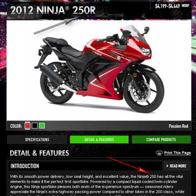 Kawasaki ninja 250 with no R