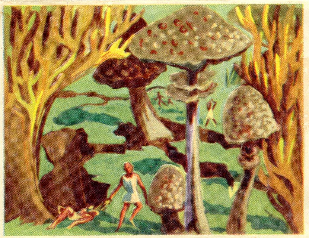 Doctor Ojiplático. Retrofuturismo Frances en los años 50. Chocolaterie Cantalou
