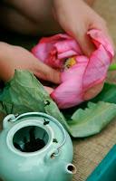 http://sweetoothdesigntea.blogspot.com/2014/04/vietnamese-lotus-tea.html