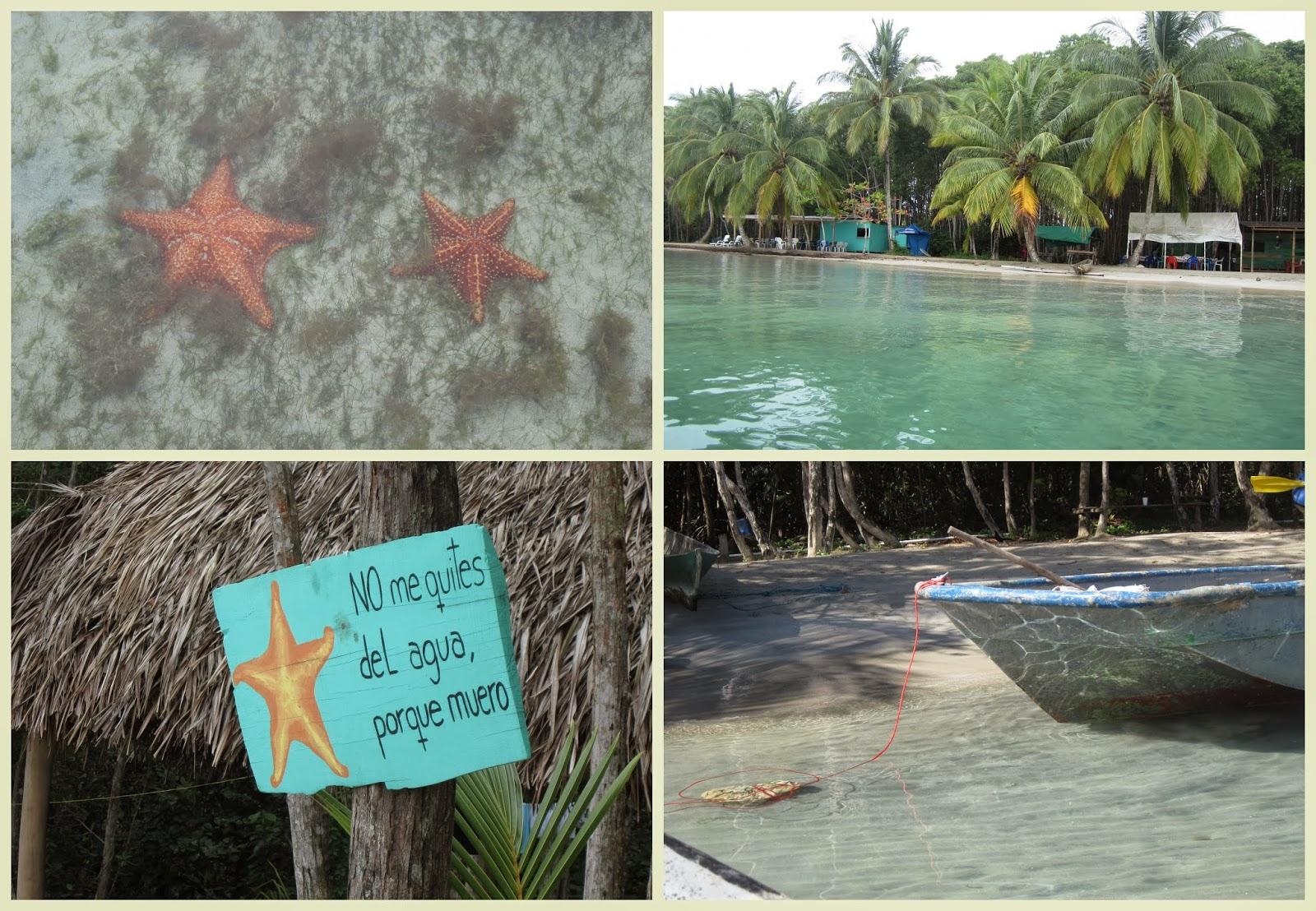 """Playa de la Estrella. Bocas del Toro"""