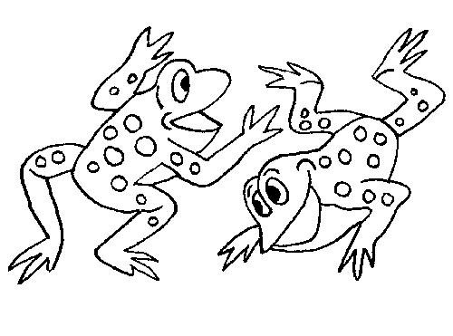 Frog Pond Coloring Page