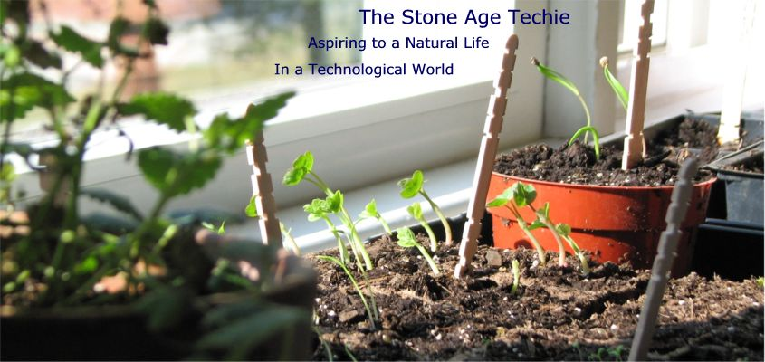 The Stone Age Techie
