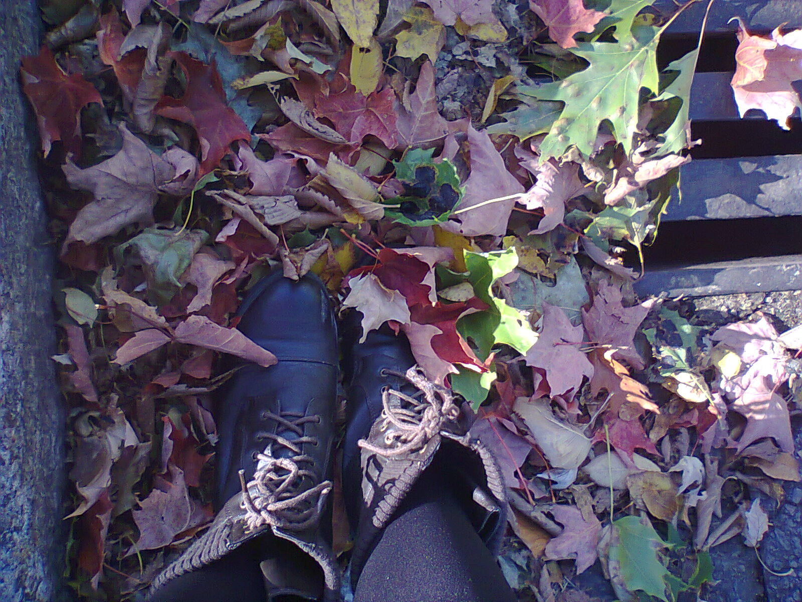 Like an infinite fall ma vie en photos changement de couleur - Ma vie en couleur changement d adresse ...