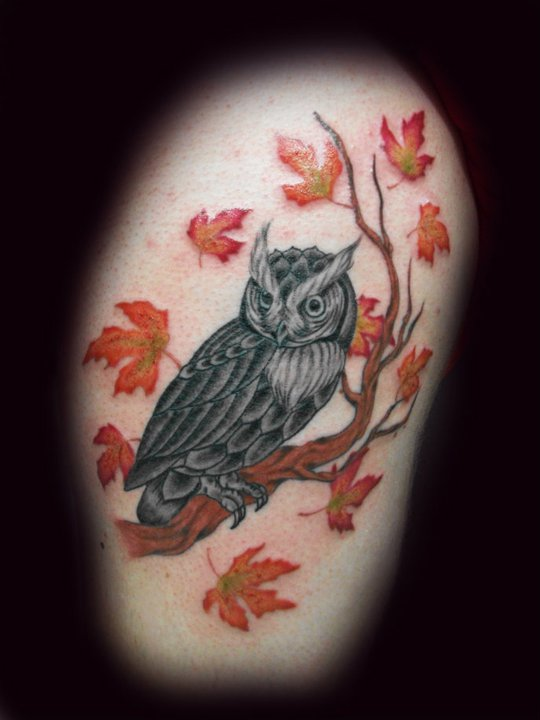 Owl on Branch Tattoo