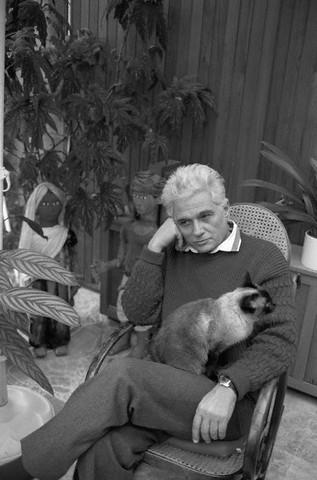 The Cat Ladies Jaques Derrida Amp Logos The Cat