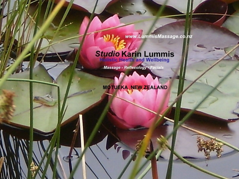 Studio Karin Lummis