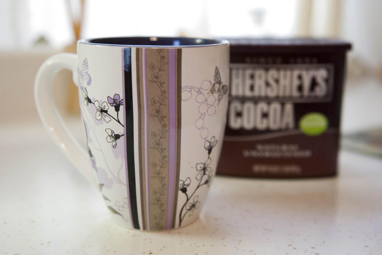 http://2.bp.blogspot.com/-jwtgxctD7Ac/TyruLED2hSI/AAAAAAAACLU/AzBRqLDadnQ/s1600/01-21-12Homemade%2BHot%2BChocolate006.jpg