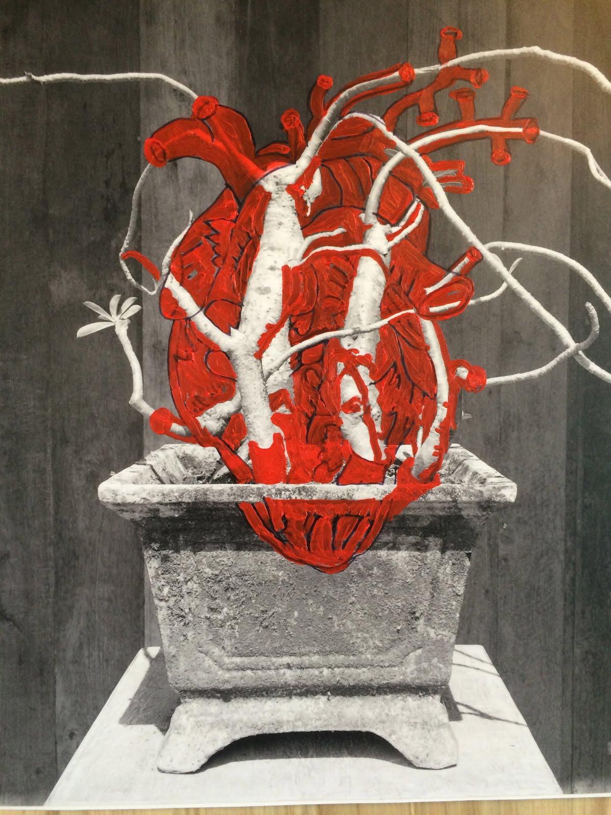 Heart Frangipani