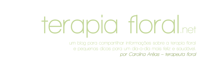 Terapia Floral ::: Carolina Arêas