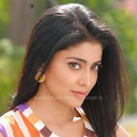 Shriya saran in nuvva nena movie