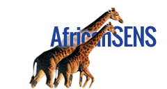 African Securities News Service