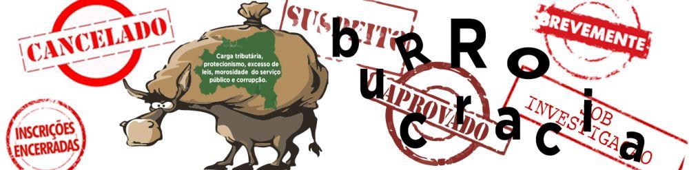 BURROCRACIA BRASILEIRA