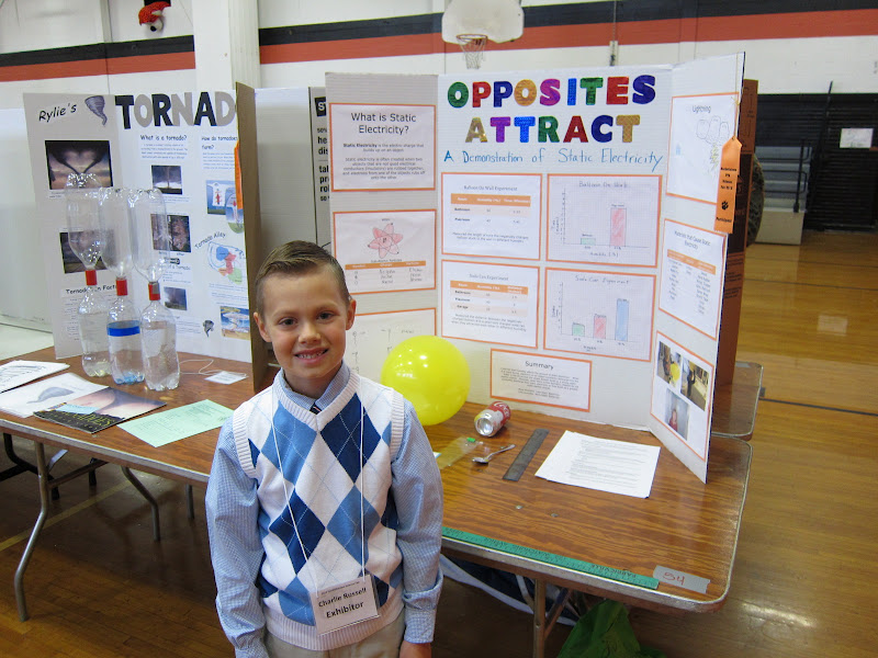 state science fair projects