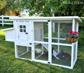Chicken Coop Reveal