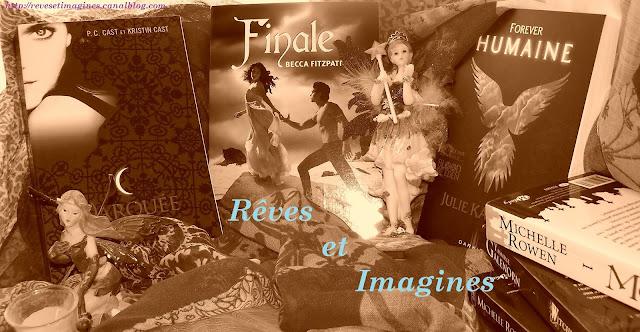 http://eneltismae.blogspot.com/2015/07/chronique-t1-par-reves-et-imagines.html