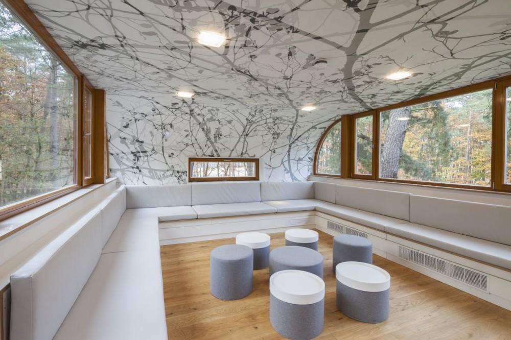 Una casa del rbol fomenta la sostenibilidad en b lgica for Arbol interior