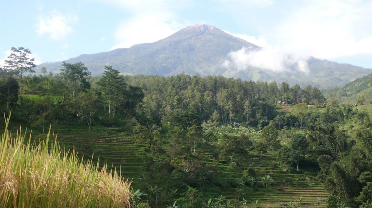 Pegunungan di pacet mojokerto