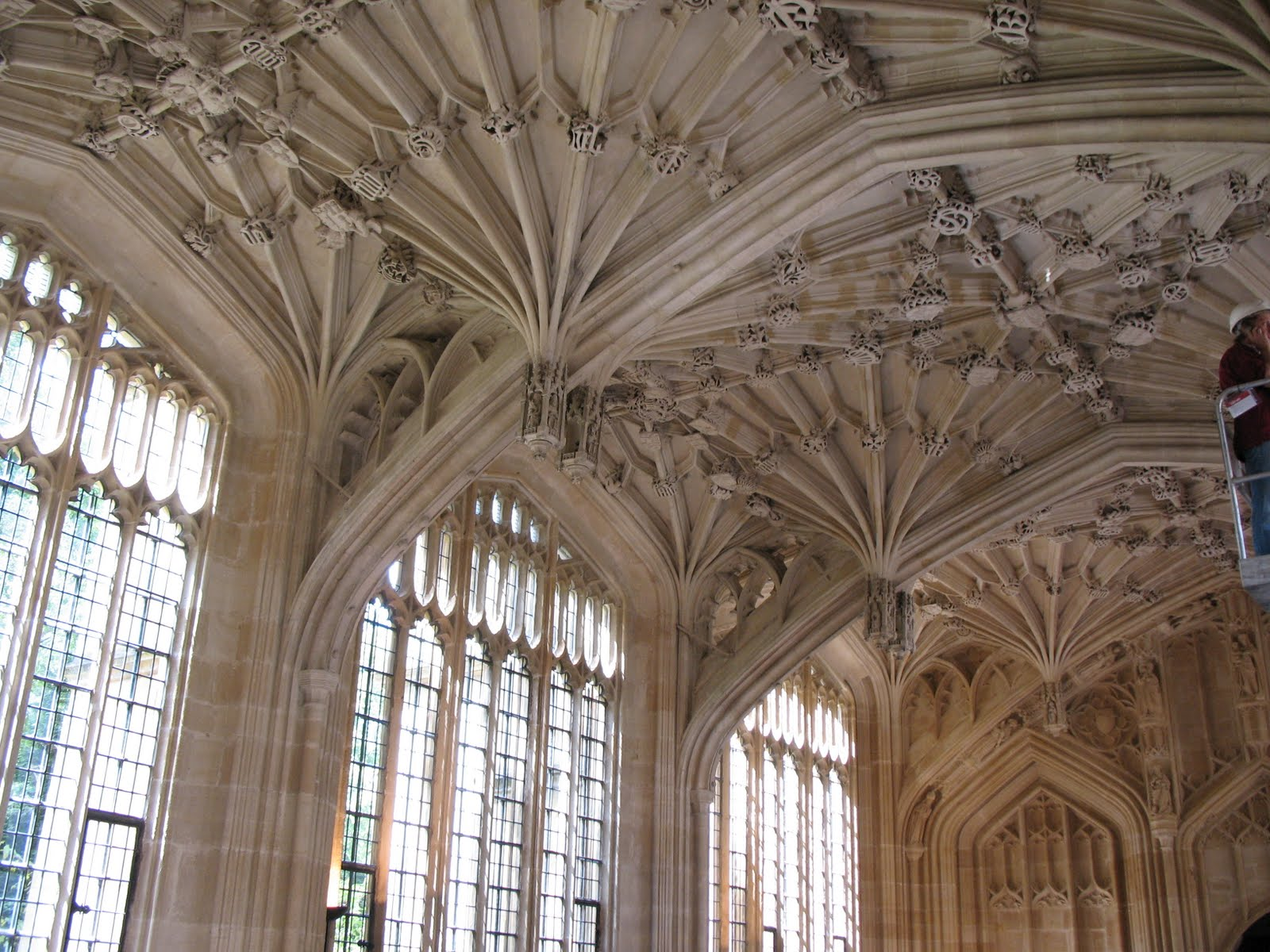 Amazing Wallpaper Harry Potter Library - The+Divinity+School  Image_909126.JPG