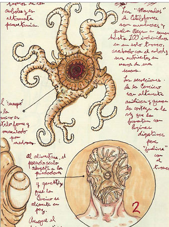 Early Concept Art For Facehugger With Creature Resembling An Omelette Accompanying OBannons Original Alien Script