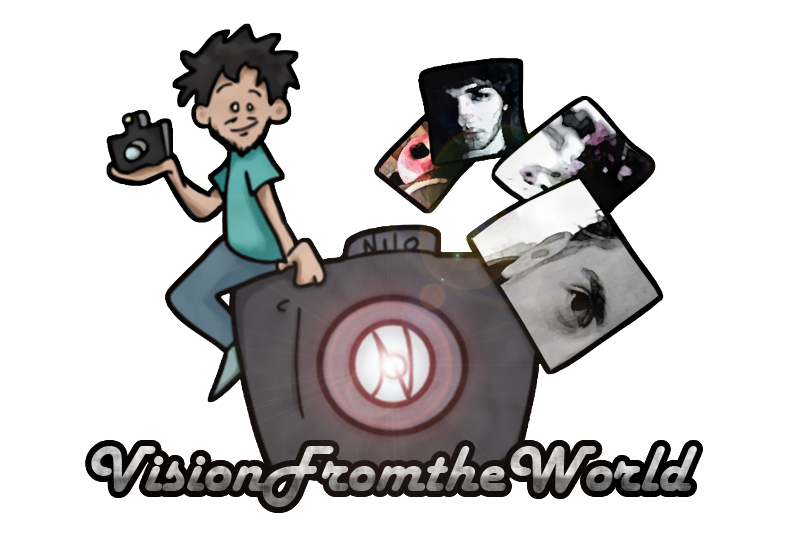 Vision From The World