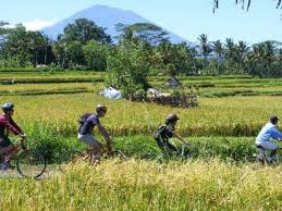 A True Cycling Tours Experiences
