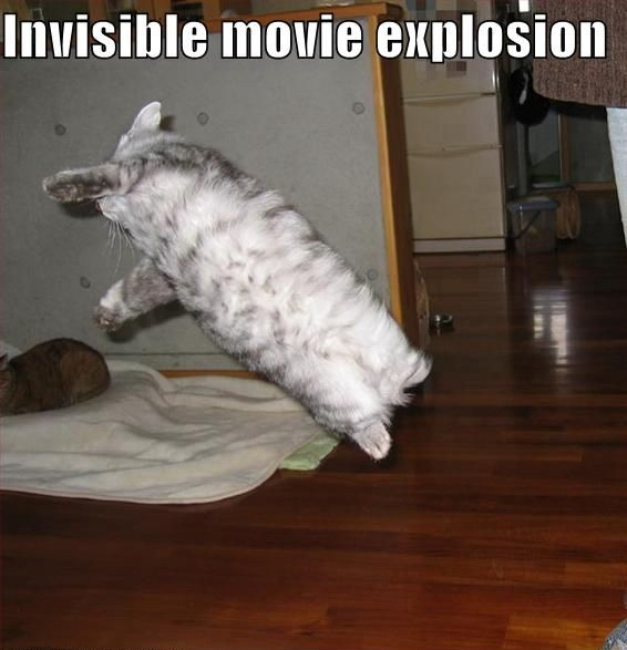 Invisible Movie Explosion - Funny Cat