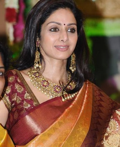 Actress Sri Devi Saree Stills
