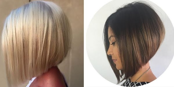 Miraculous Gorgeous Graduated Bob Haircuts Hairstyle Inspiration Daily Dogsangcom