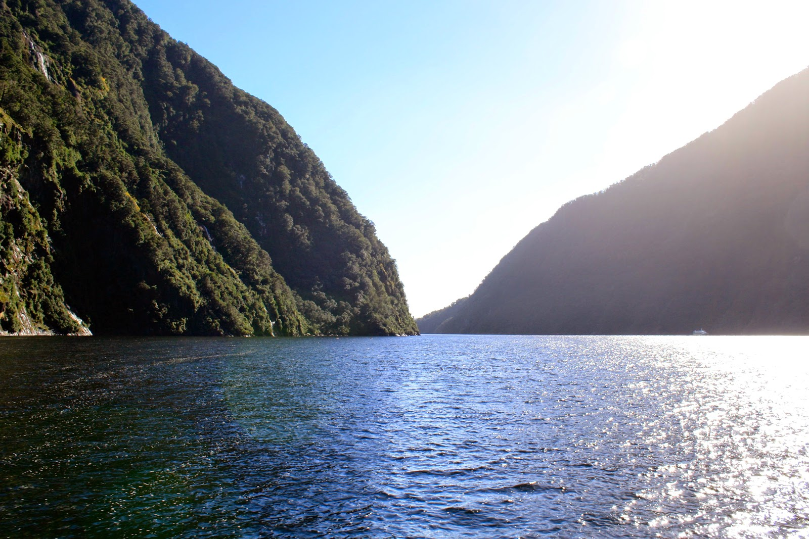 Sunlight on the water in Milford Sound.