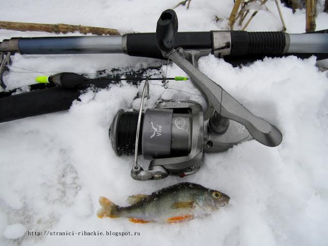 ловля в проводку зимой