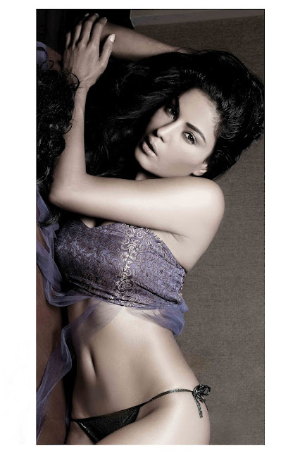 Veena malik Cleavages