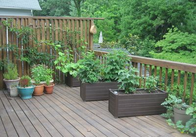 Regardless Of How Large Or Small Your Patio, There Is Always Room For A  Garden. You Can Build Some Small Raised Beds To Use On Your Patio, ...