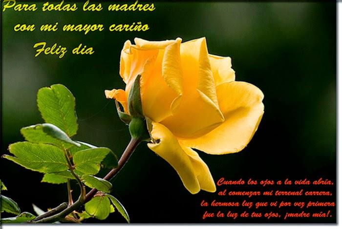 Frases Dia De La Madre: Para Todas Las Madres Con Mi Mayor Cariño Feliz Día