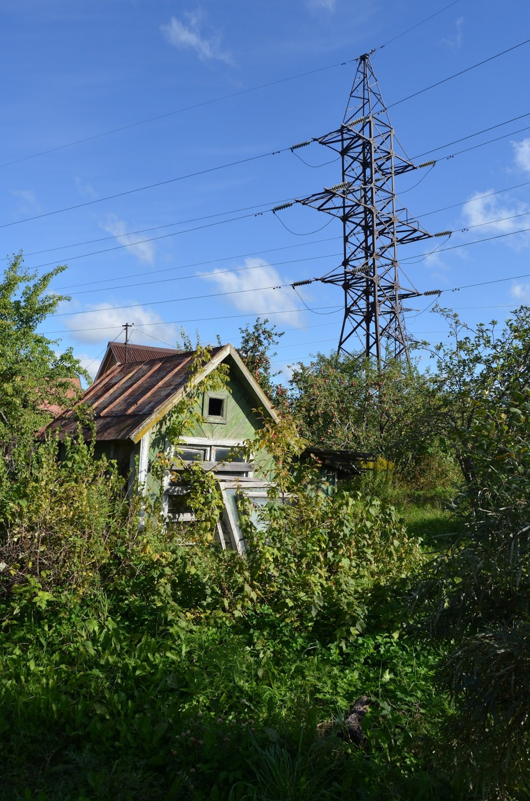 What is sold by the garden book is it worth buying such a dacha