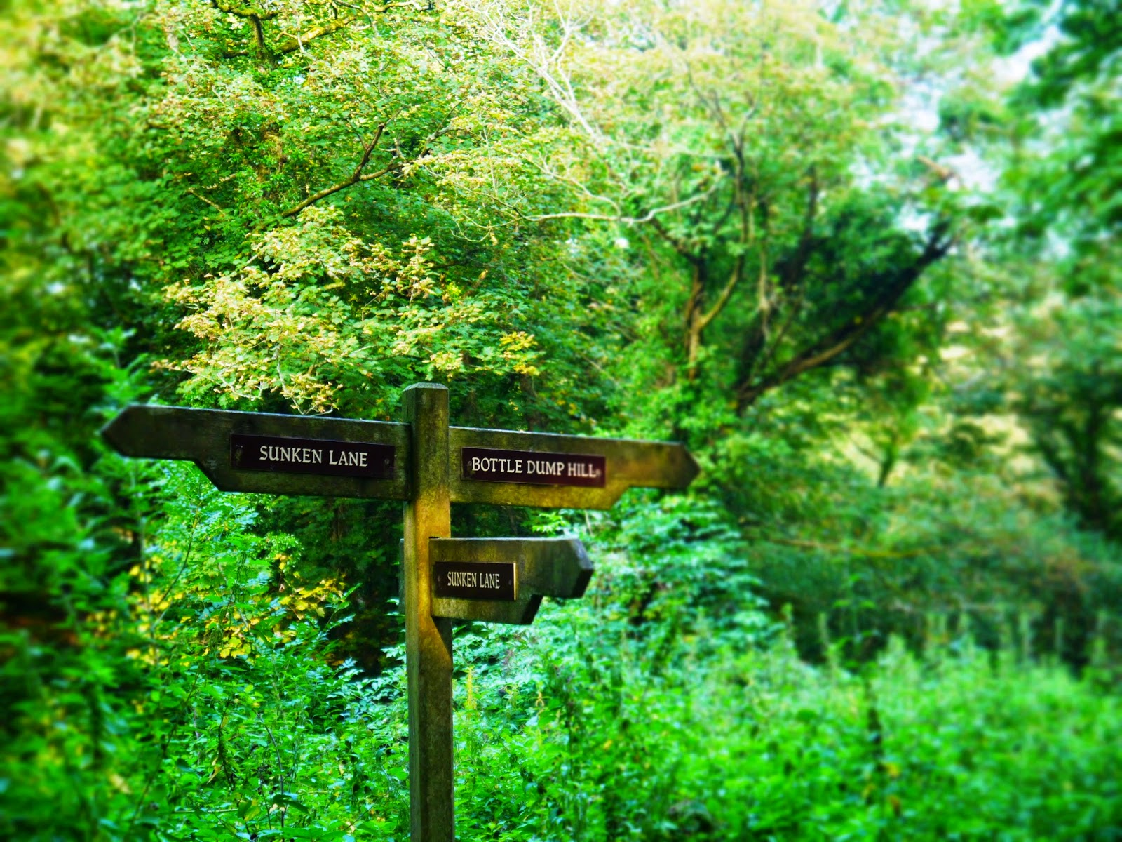 The Lost Gardens of Heligan, Cornwall - woodland trail sign