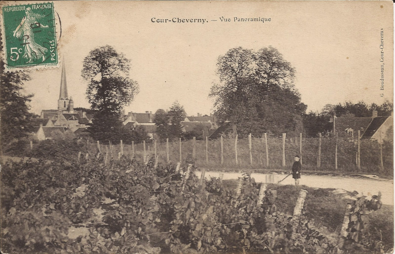 Cour-Cheverny - Panorama